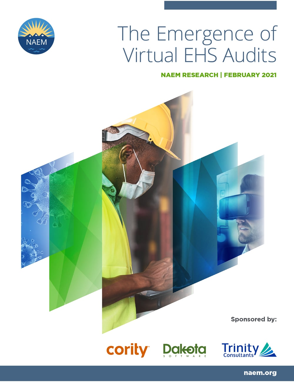 The Emergence of Virtual EHS Audits